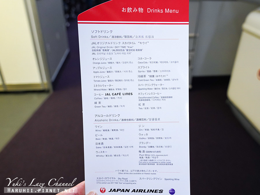 日航紐約經濟艙JL4日本航空長程洲際線26.jpg
