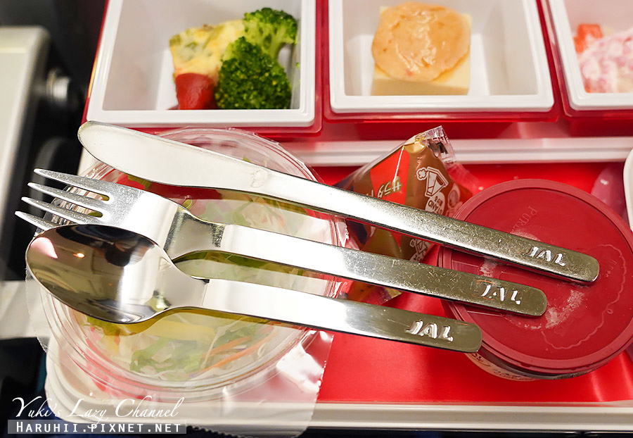 日航紐約經濟艙JL4日本航空長程洲際線45.jpg