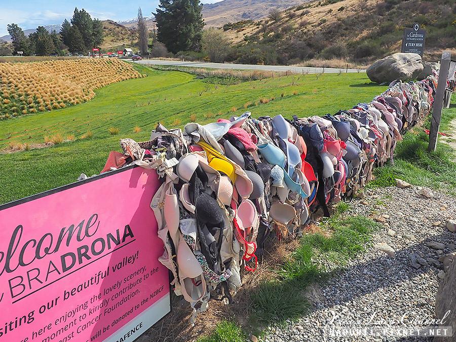 內衣柵欄Cardrona Bra Fence10.jpg