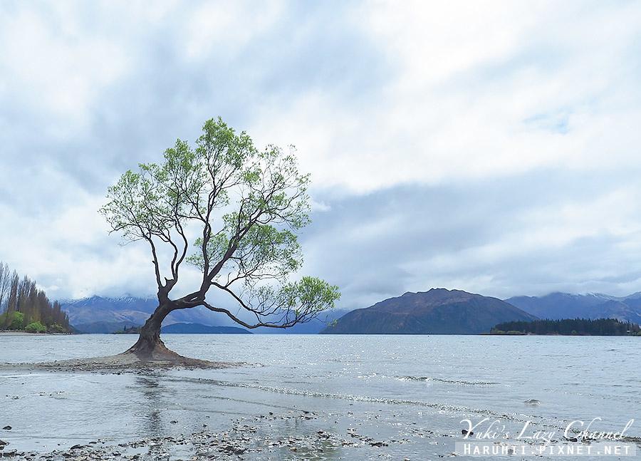 瓦納卡景點Wanaka17.jpg