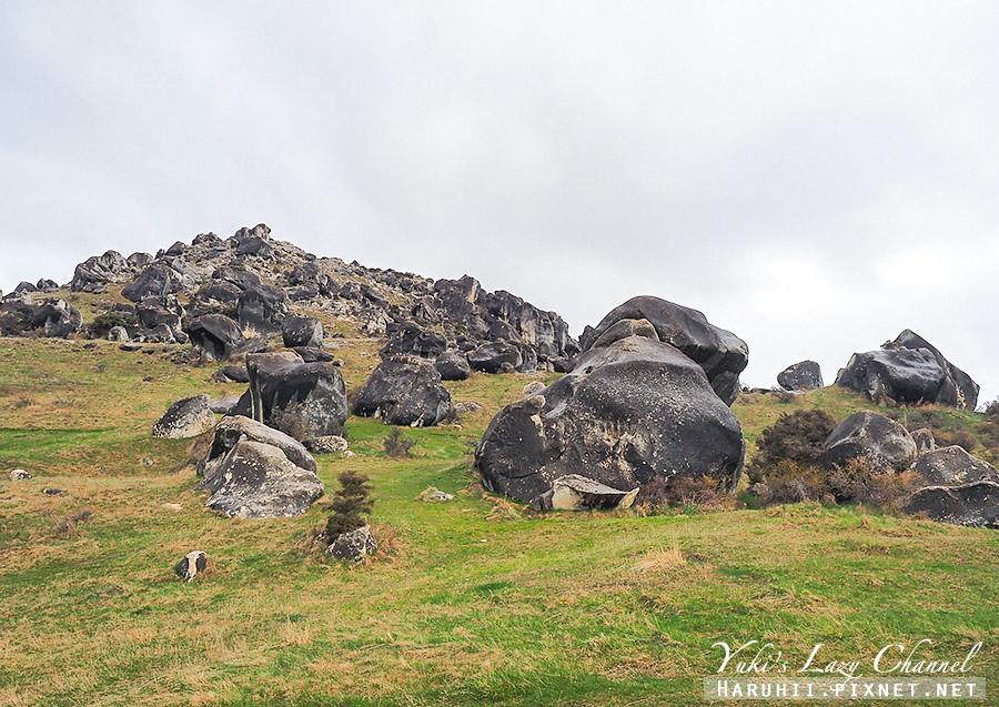 Castle Hill Kura Tawhiti5.jpg