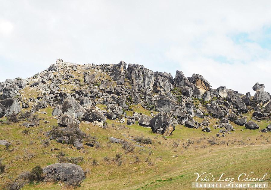 Castle Hill Kura Tawhiti16.jpg