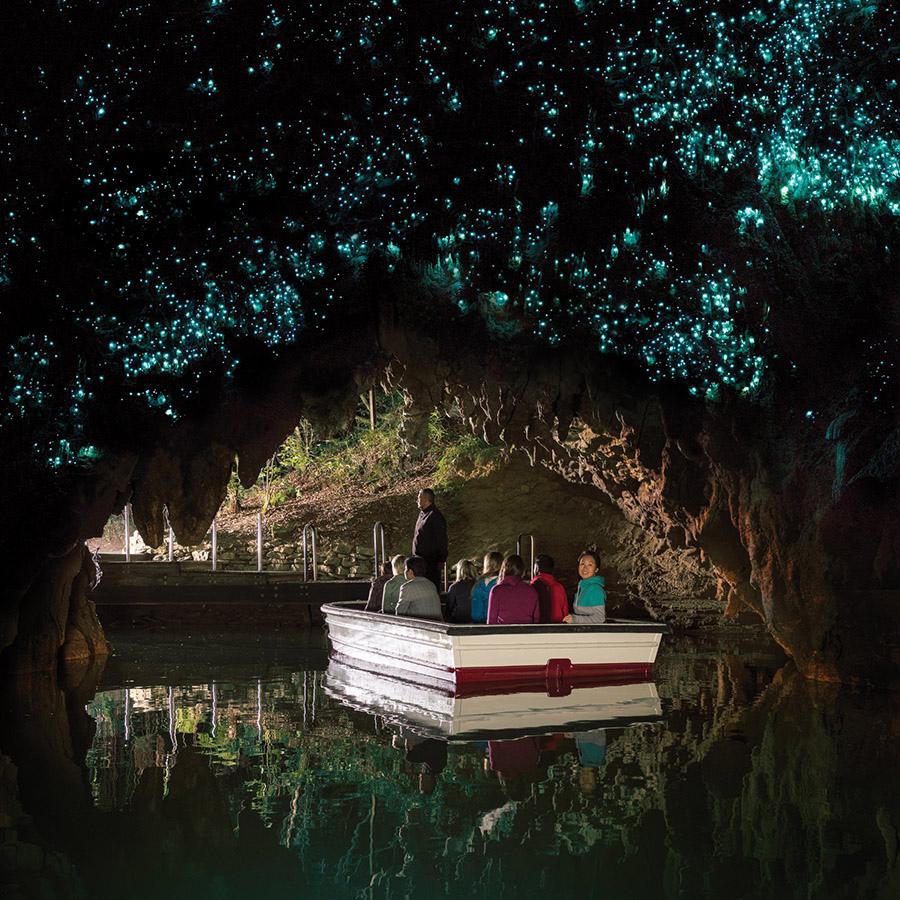 懷托莫螢火蟲洞穴之旅