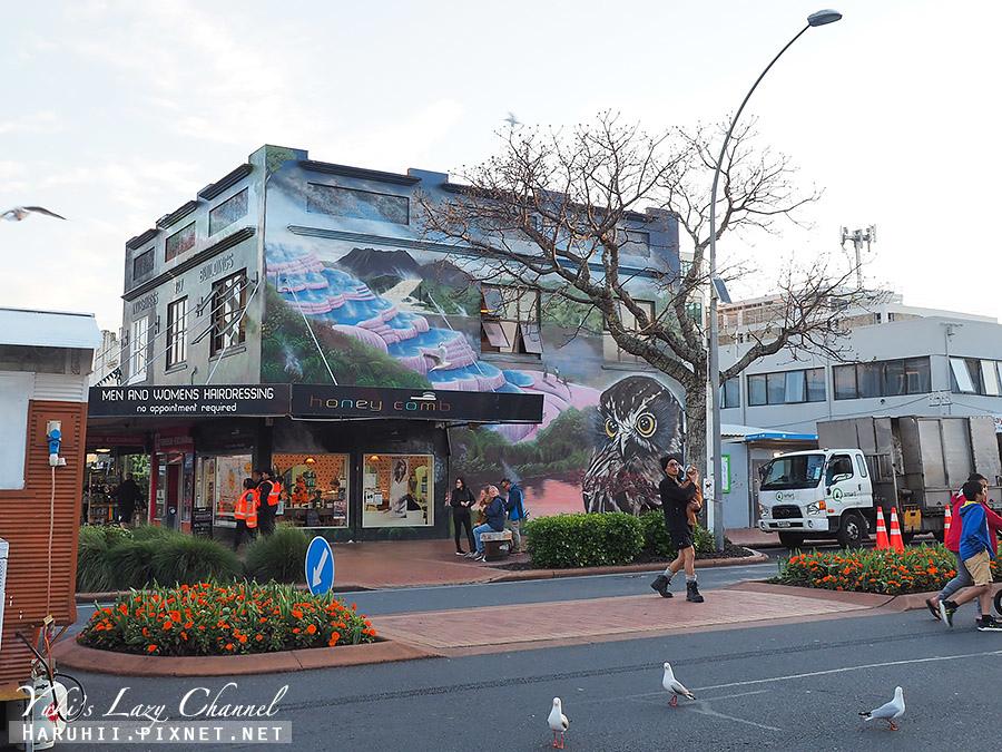 羅托魯瓦夜市Rotorua night market25.jpg