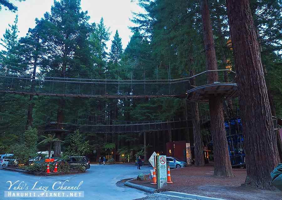 羅托魯瓦Redwoods Treewalk紅木森林樹頂步道1.jpg