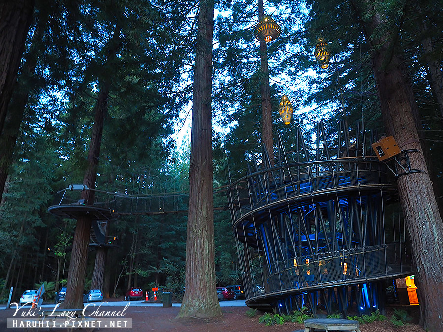 羅托魯瓦Redwoods Treewalk紅木森林樹頂步道2.jpg