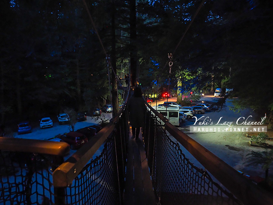 羅托魯瓦Redwoods Treewalk紅木森林樹頂步道9.jpg