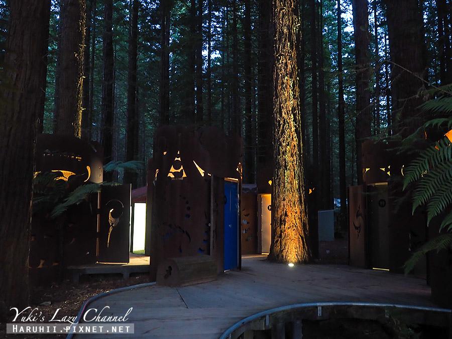 羅托魯瓦Redwoods Treewalk紅木森林樹頂步道6.jpg