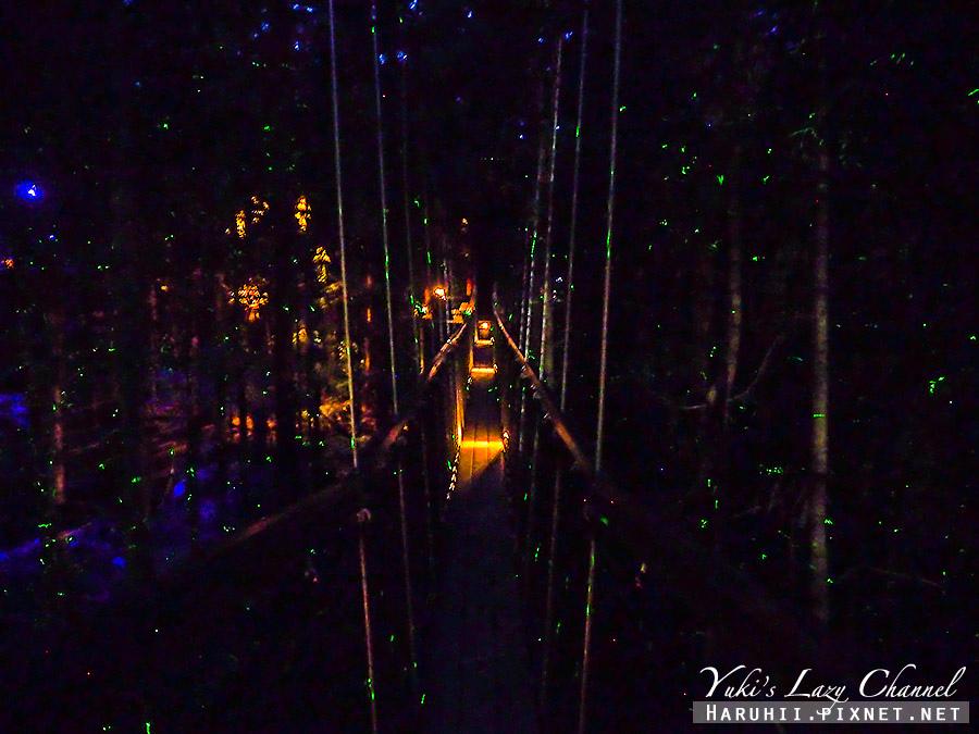 羅托魯瓦Redwoods Treewalk紅木森林樹頂步道12.jpg