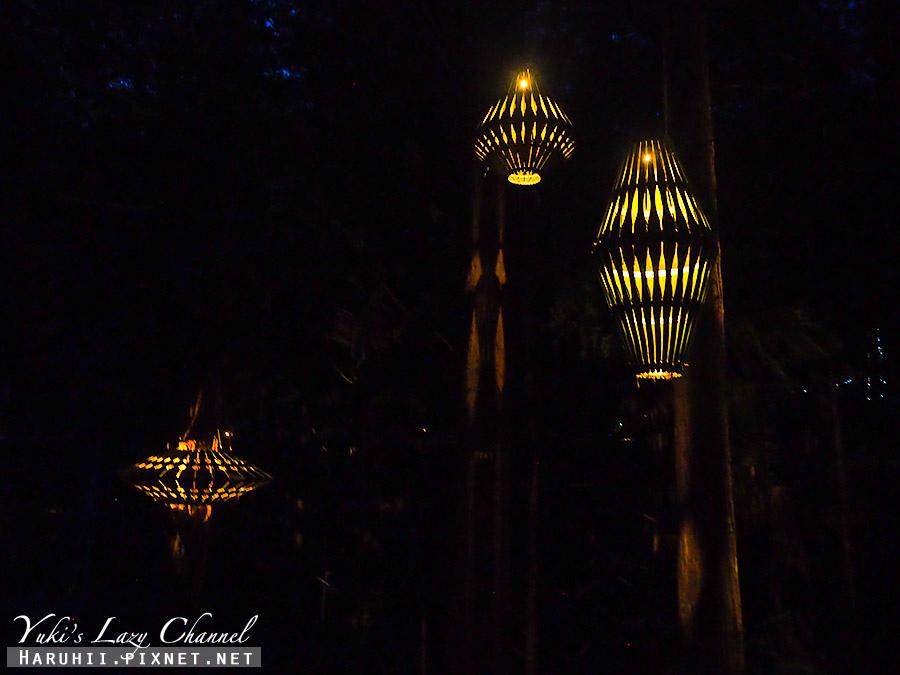 羅托魯瓦Redwoods Treewalk紅木森林樹頂步道13.jpg