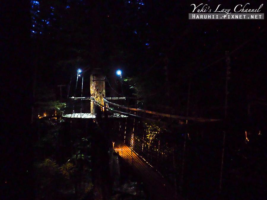 羅托魯瓦Redwoods Treewalk紅木森林樹頂步道14.jpg
