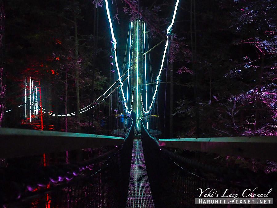 羅托魯瓦Redwoods Treewalk紅木森林樹頂步道19.jpg