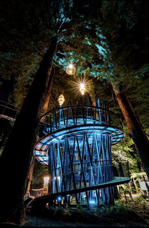 羅托魯瓦Redwoods Treewalk紅木森林樹頂步道22.png