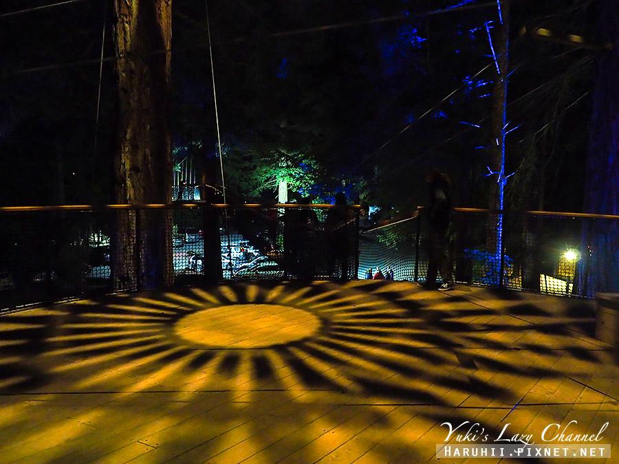 羅托魯瓦Redwoods Treewalk紅木森林樹頂步道20.jpg