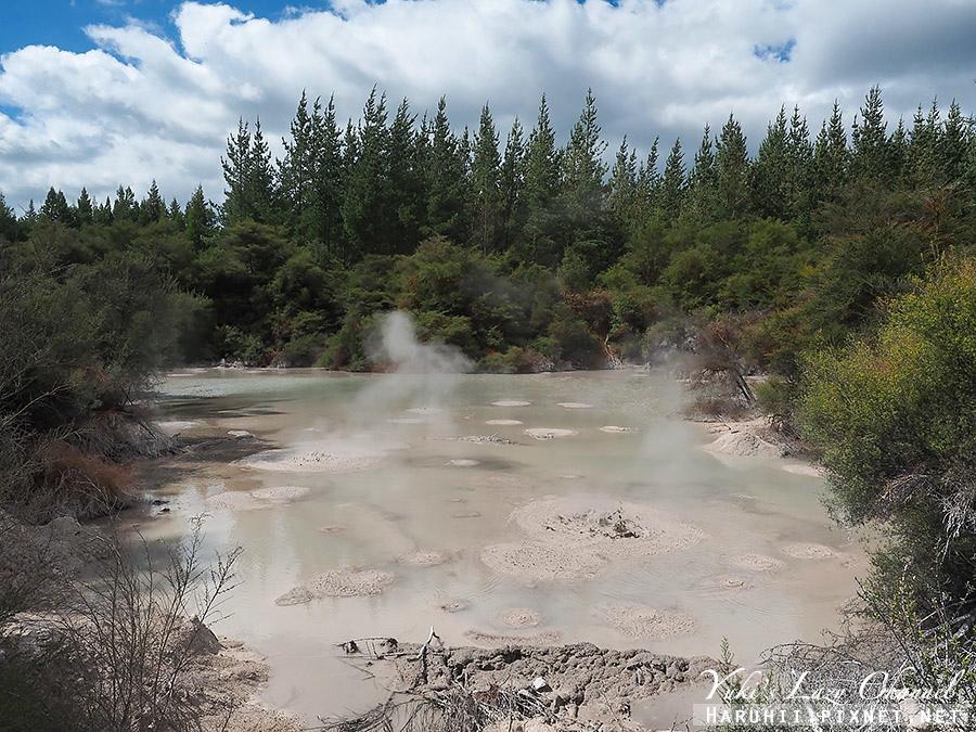 羅托魯瓦Wai-O-Tapu懷奧塔普地熱世界28.jpg