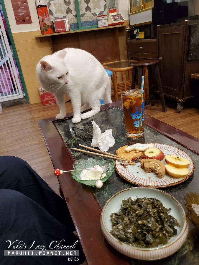 台北中途貓餐廳_貓藝家21.jpg