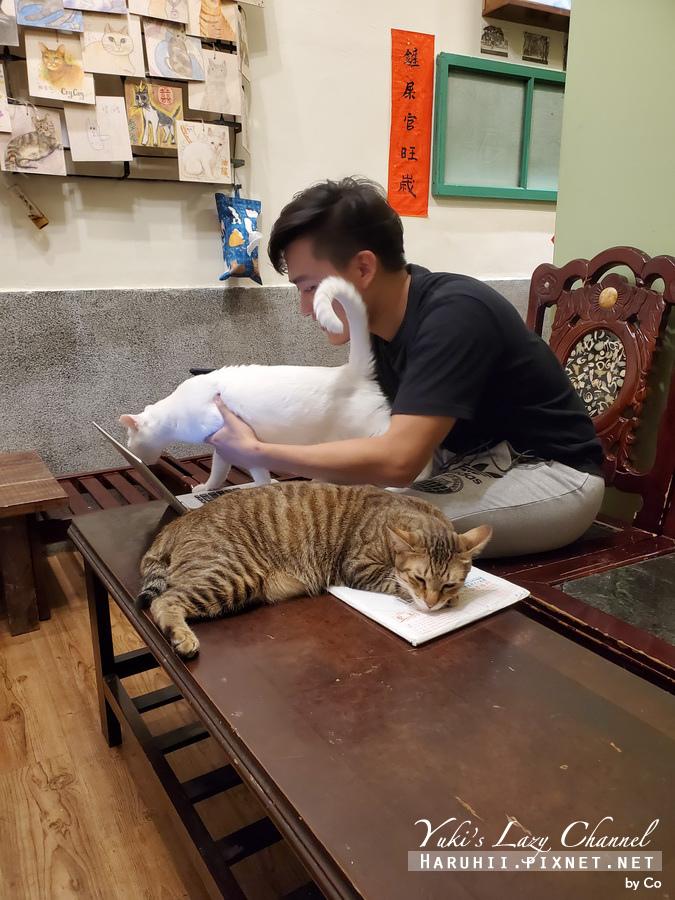 台北中途貓餐廳_貓藝家27.jpg