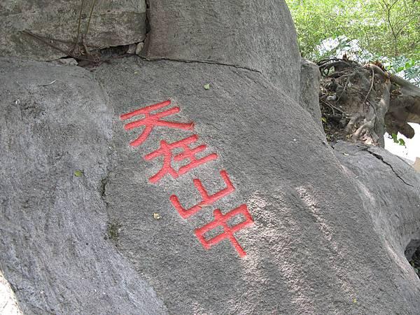 43_呂俊憲醫師_天在山中.JPG