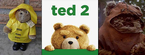 Ted-04