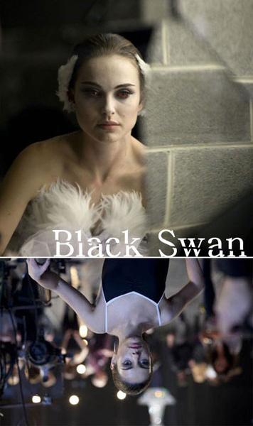 black_swan-1-01.jpg