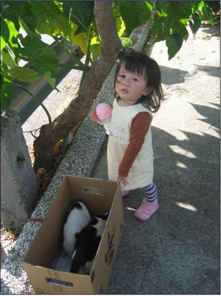 2011-03-20 壽山動物園-媽媽你看小貓貓.JPG