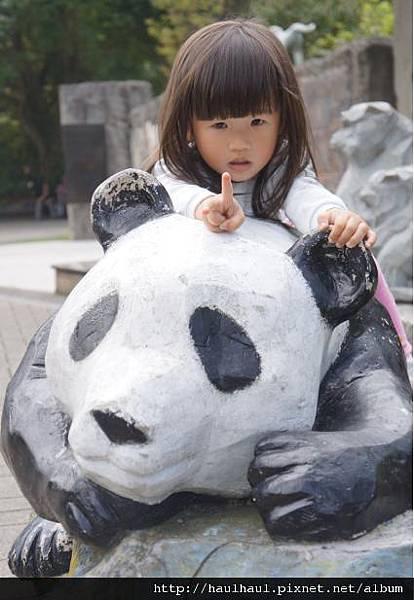 2012-03-05 第二次來動物園~大熊貓