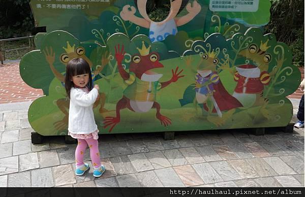 2012-03-05 第二次來動物園~可愛沛1