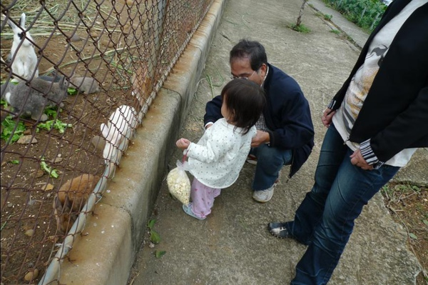 2010-10-31 沛沛與兔子對望.JPG