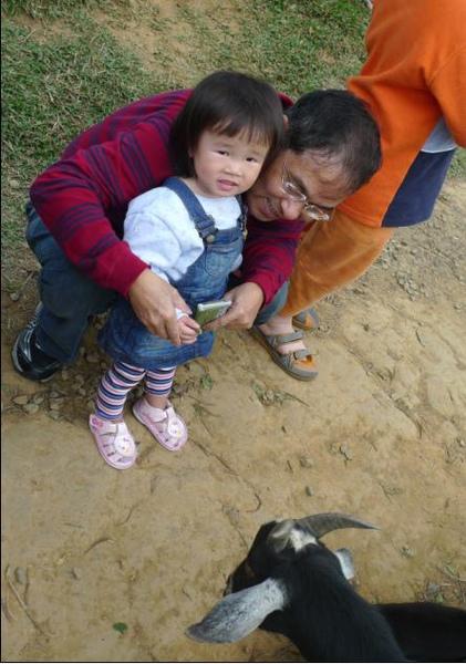 2010-12-05 沛沛餵羊咩咩I.JPG