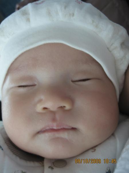 2009-10-09  在車上睡覺的小沛沛之磨菇照1.JPG