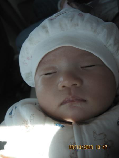 2009-10-09  在車上睡覺的小沛沛之磨菇照6.JPG