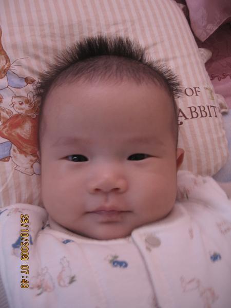 2009-10-26 我的小沛沛.JPG