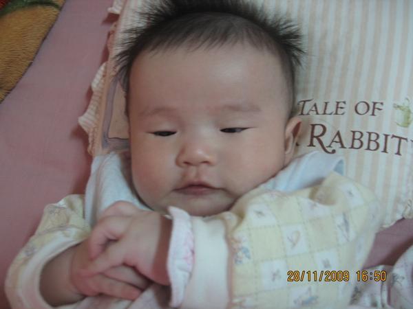 2009-12-1 我的小沛沛.JPG