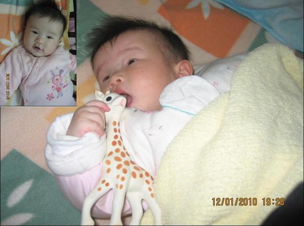 2009-12-19 小沛沛與蘇菲.JPG