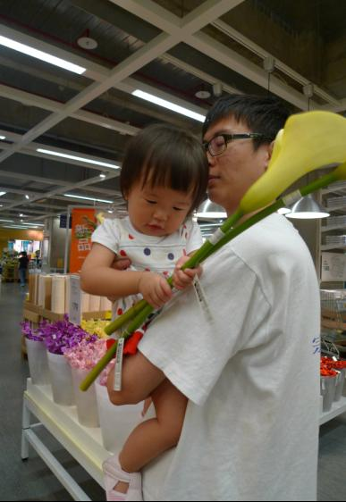2010-08-28 IKEA 之旅~海芋1.JPG