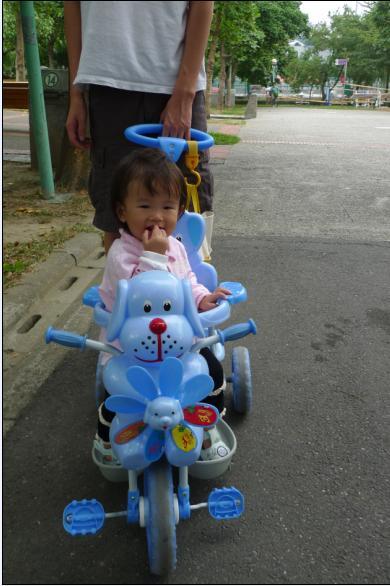 2010-10-17 小沛沛坐著車車公園行.JPG