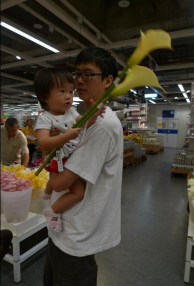 2010-08-28 IKEA 之旅~海芋2.JPG