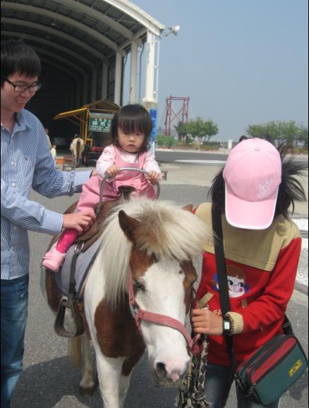 2011-02-26 台南七股鹽山行-小沛沛騎馬嚕.JPG