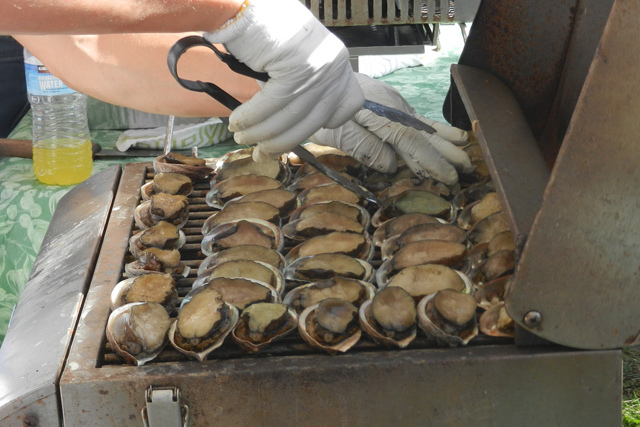 Honolulu_Diamond_Head_Farmers_Market_Abalone_4_2012