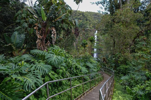 hawaii-akaka-falls3