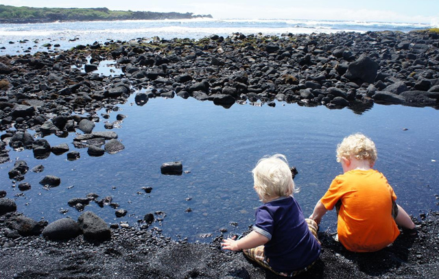 120619-Punaluu-Black-Sand-Beach-Park-13
