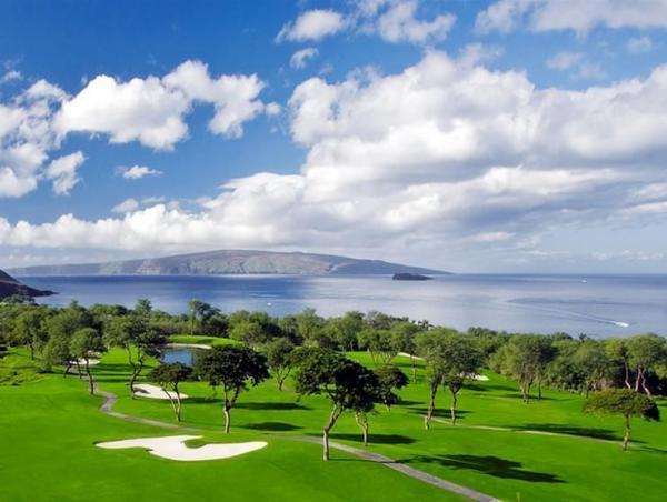 高爾夫13