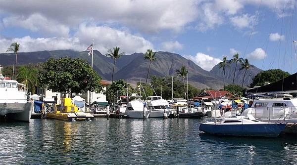 lahaina-harbor