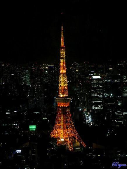 東京鐵塔夜.jpg