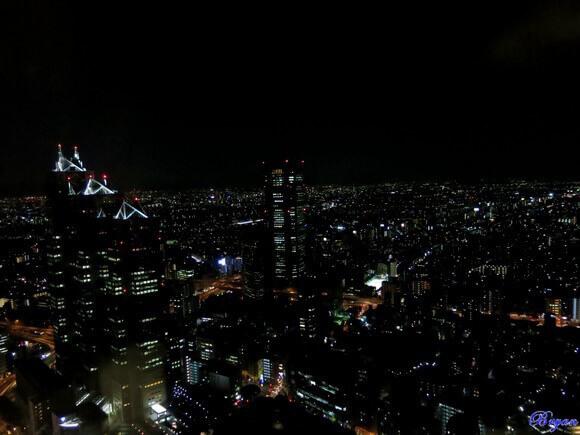 新宿免費夜景1.jpg