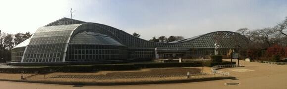 京都植物園1.jpg