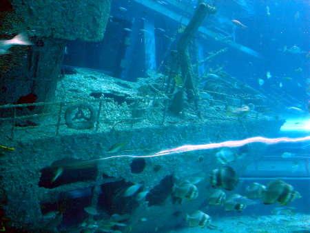 11 沉船