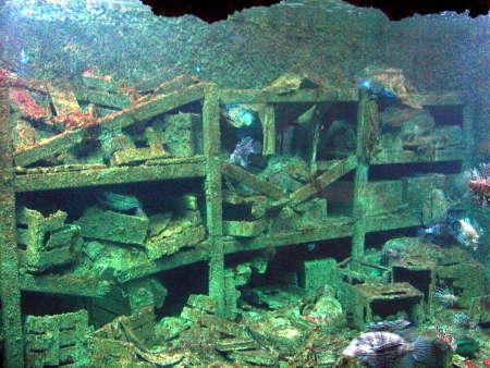 14 沉船