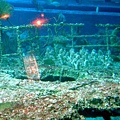 18 沉船甲板
