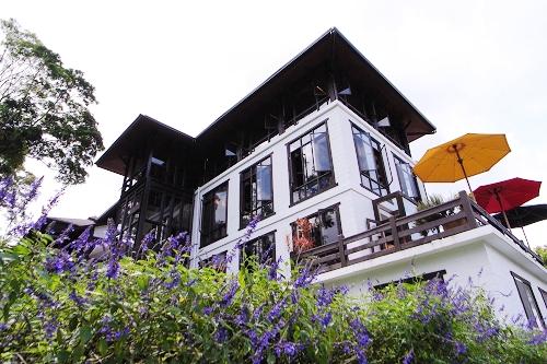 020森林咖啡館.jpg